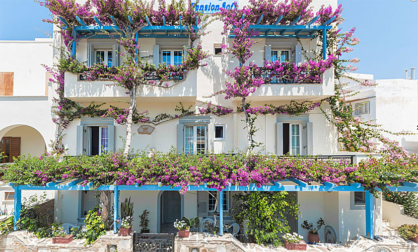 Pension Sofi. Naxos stad.